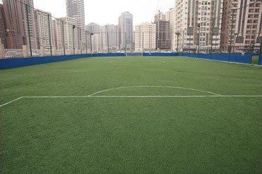 Al Hadaf Field 1 MEDI8724-03