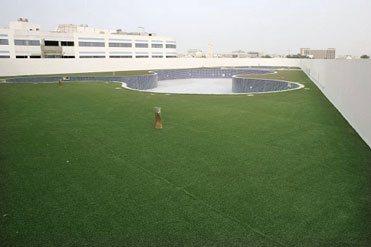 Dubai Autism Landscape MEDI7923-01