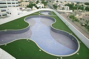 Dubai Autism Landscape MEDI7930-03