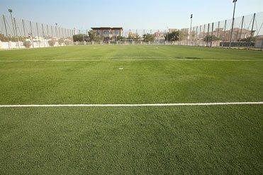 Elyash Park MEDI6193 -02