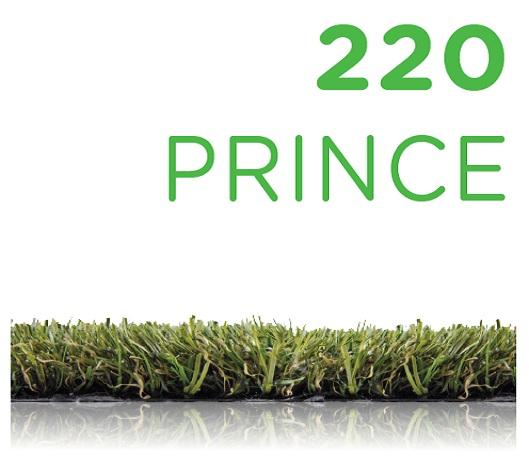 220 prince