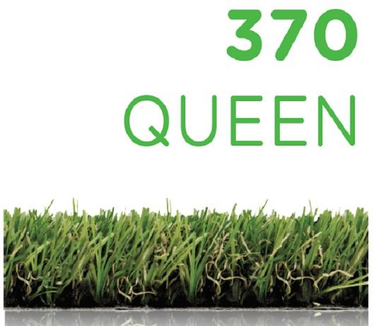 370 queen