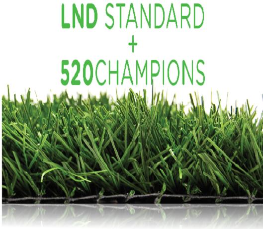 520 champions - SOCCER